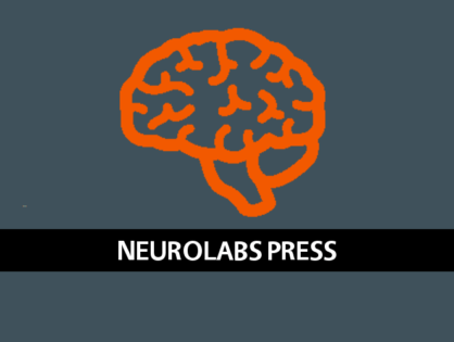 PocketGamer.biz Interview - What advertisers can learn from Magmic's neurolabs study into player habits